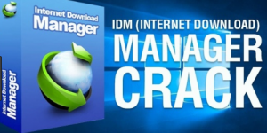 Idm Serial Number 6.36 build 7 Crack with patch 2020 Free